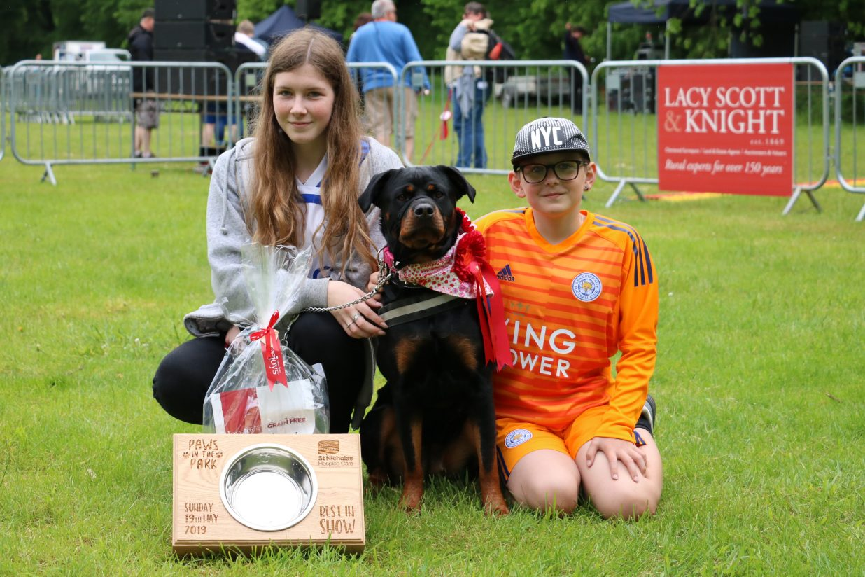 Nowton Park comes alive to the sounds of dog woofs and wagging tails