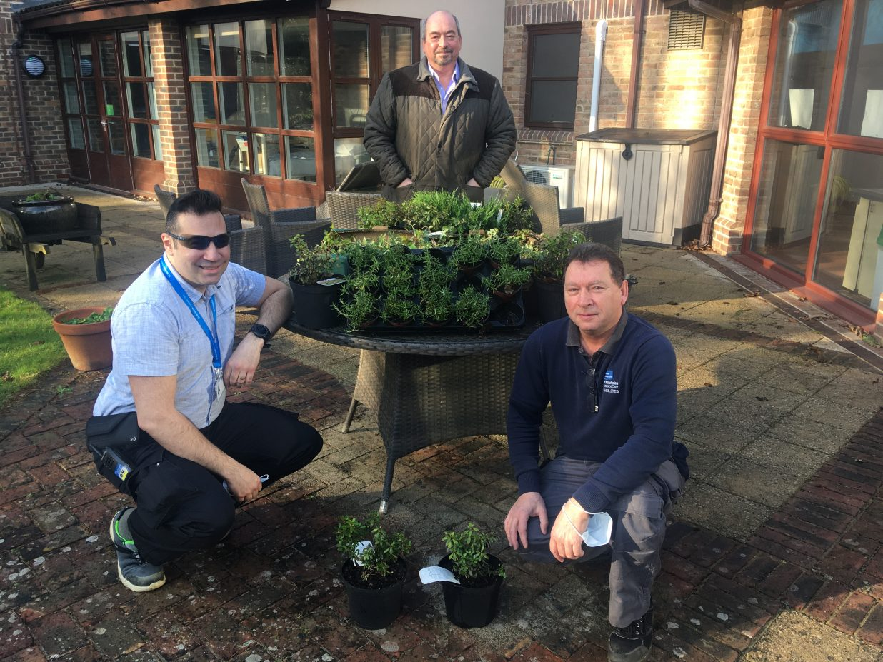 Winter garden blooms thanks to firm's kindness
