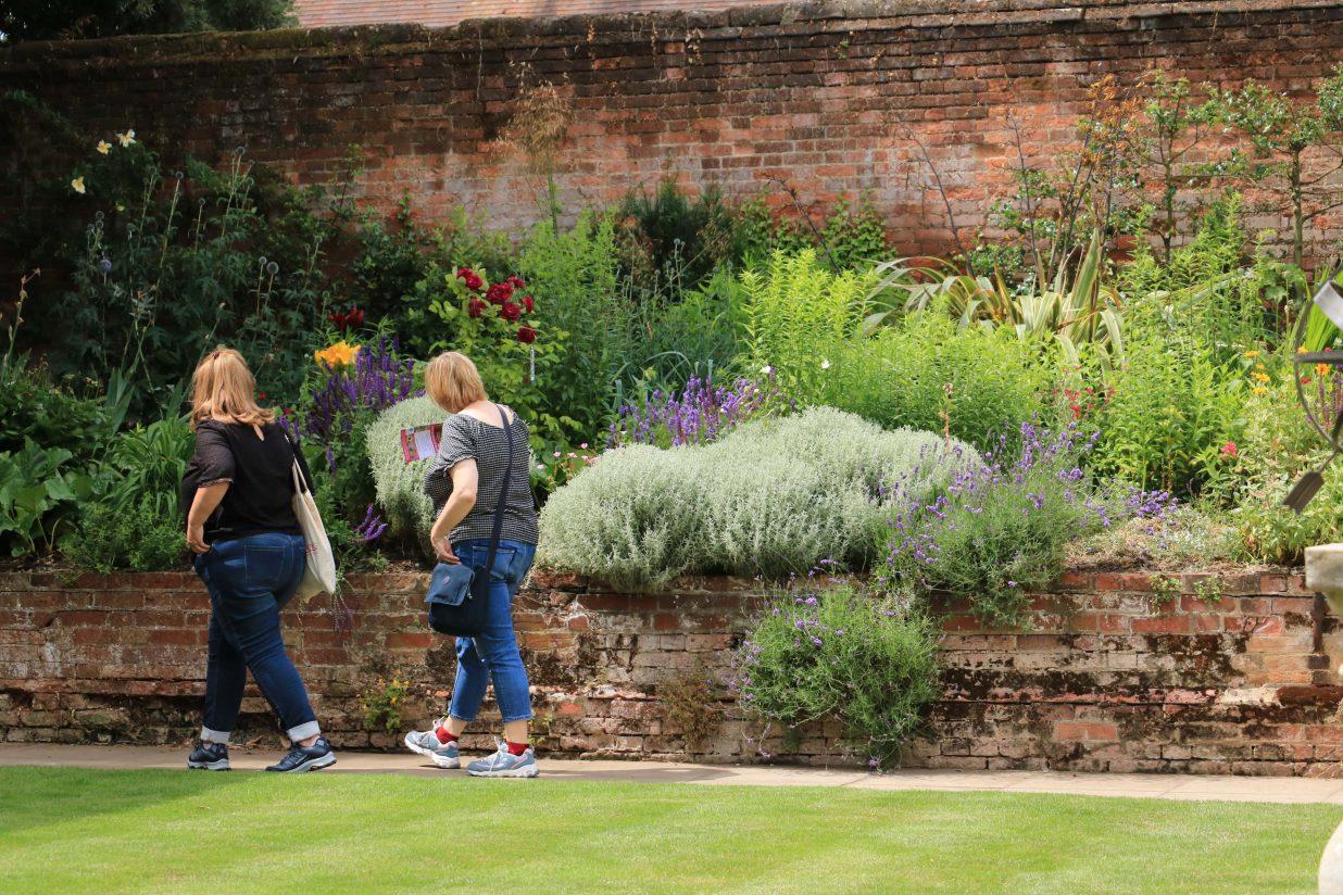 The Hidden Gardens of Bury bloom